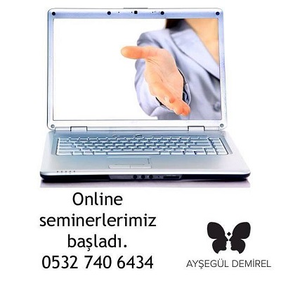 online seminer